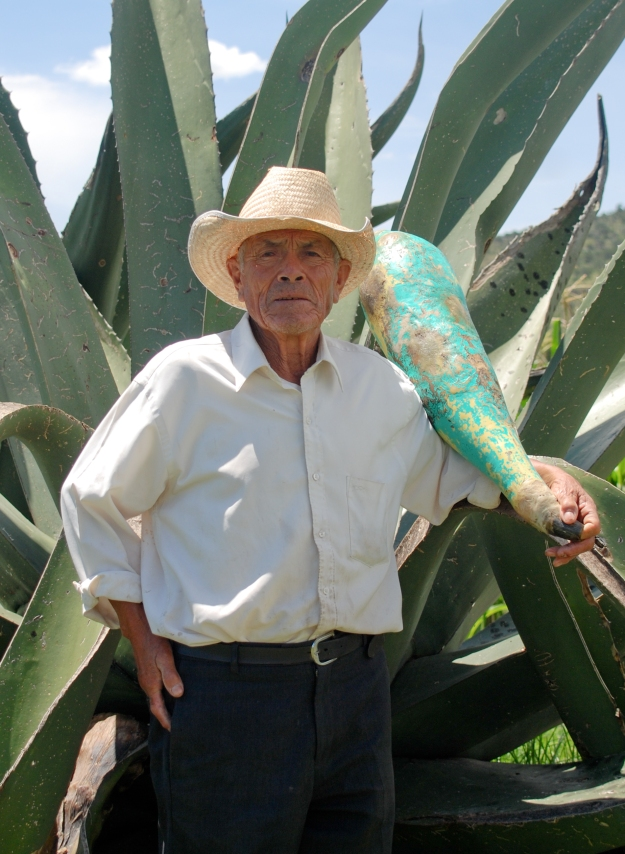 Pulque Aguamiel Extraction Expert