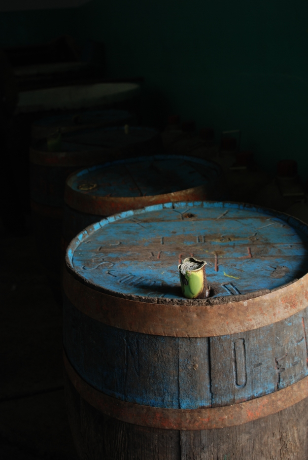 Barrells of Pulque